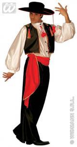 Flamengo tanečník
